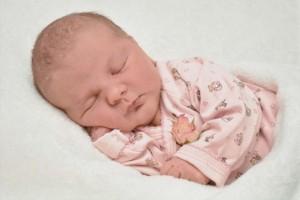 八个月宝宝发烧怎么办宝宝发烧吃什么