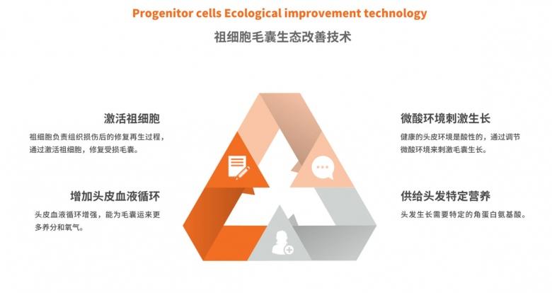祖细胞毛囊生态改善法.png